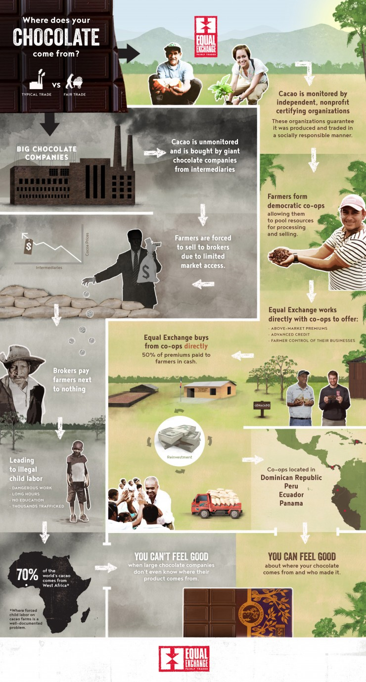 Chocolate Supply Chain Infographic